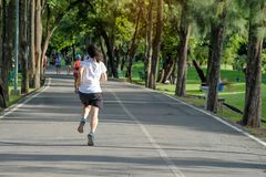 Young fitness woman running in the park outdoor, female runner walking on the road outside, asian athlete jogging and exercise on. Footpath in sunlight morning royalty free stock photo