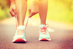 Young fitness woman tying shoelaces Royalty Free Stock Image