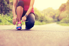 Young fitness woman tying shoelaces Royalty Free Stock Images