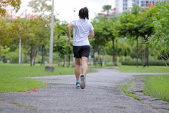 Young fitness woman walking in the park outdoor, female runner running on the road outside, asian athlete jogging and exercise on. Footpath in sunlight morning royalty free stock photography