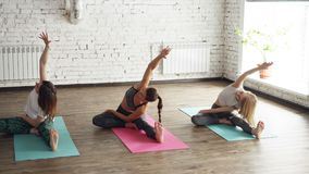 Young flexible women are doing various stretching exercises sitting on yoga mats in nice light studio. They are bending. Head or chest to knee concentrated on stock footage