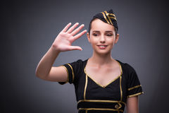 The young flight attendant on gray background Stock Image