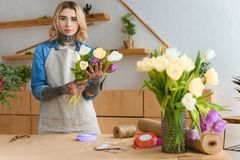 Young florist in apron holding beautiful tulips and looking at camera. In flower shop royalty free stock photos