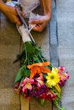 Young florist Royalty Free Stock Images