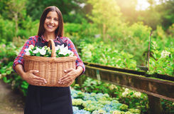Young florist working in the greenhouse Stock Images