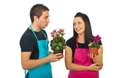 Young florists colleagues having conversation Royalty Free Stock Image