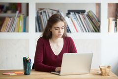 Young focused female student working on laptop sitting at desk. Young focused female student working on laptop sitting at home office desk, serious businesswoman Stock Photography