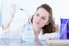 Scientist working in laboratory. Young, focused scientist working in a white laboratory royalty free stock images