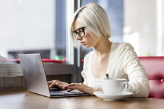 Young focused woman working with laptop computer in cafe Royalty Free Stock Photography