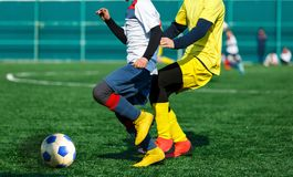 Young footballers dribble and kick football ball in game. Boys in yellow white sportswear running on soccer field.Training. Active lifestyle, sport, children royalty free stock images
