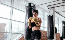 Young athlete with good figure is putting up a fight at gym. Young forceful athlete with good figure is putting up a fight at gym. keep fit. physical health Stock Image