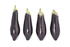 Young fresh black eggplants. Isolated on white Stock Photography