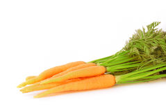 Young fresh carrot Stock Photos