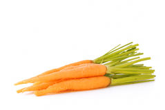 Young fresh carrot. Close-up Royalty Free Stock Photos