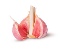 Young fresh garlic Stock Photography