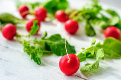 Young fresh radishes on white board. Young fresh radishes on white wooden background Royalty Free Stock Photo