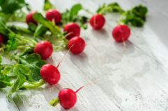 Young fresh radishes on white board. Young fresh radishes on white wooden background Stock Photos