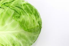 Young fresh white cabbage with green leaves close-up royalty free stock images