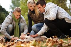 Young friends having autumn fun in park Royalty Free Stock Photos