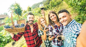 Young friends having fun taking selfie at winery vineyard outdoor - Friendship concept on happy people enjoying harvest together royalty free stock photos