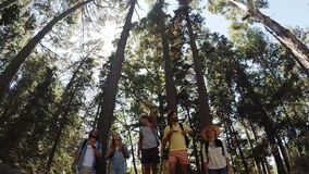 Young friends on a hike. In slow motion stock video footage