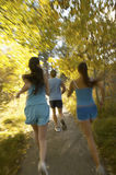 Young Friends Jogging In Forest Stock Images