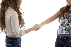 Young friends shaking hands royalty free stock photo