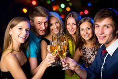 Young friends touching the glasses with each other. Happy group of young friends touching the glases with each other stock photo