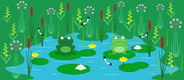 Young frogs. Two young frogs on a pond with flowers, water-lilies and butterflies Stock Photos