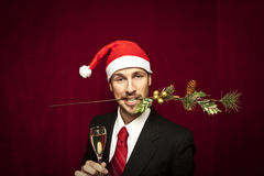 Free Young Funny Guy With Christmas Hat Stock Image - 17460341
