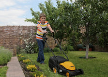 Young  gardener Stock Images