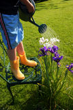 Young Gardener. Young boy waters his orchids with the aid of a garden chair and watering can Royalty Free Stock Photography
