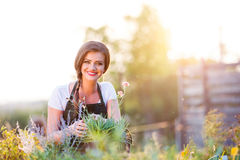 Young gardener in garden with various plants, sunny nature Royalty Free Stock Images