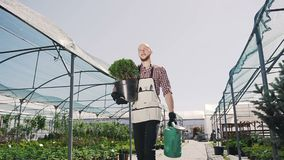 The young gardener goes greenhouse, holds in the hands of a green pot and funnel. Stabilized camera movement, overall. Plan. Slow motion stock video
