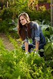 Young gardener woman working in her harden Stock Photo