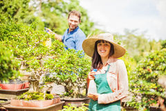 Young gardeners with bonsai Stock Image