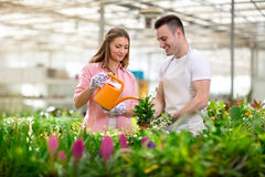 Young Gardening people Royalty Free Stock Images
