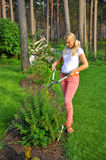 Young gardening woman trimming plant in the garden. View on trees Stock Images