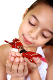 A young girl admiring a beautiful red butterfly. Isolated on white Royalty Free Stock Image