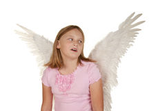 Young girl with angel fairy wings Stock Images