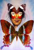 Young girl angelic face and a butterfly. Structure and color Collage art. Royalty Free Stock Image