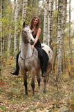 Young girl with appaloosa horse in autumn Stock Images