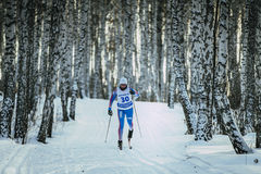 Young girl athlete skier rides on track in birch forest classic style Royalty Free Stock Photography