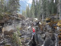 Crossing a canyon on a tightrope. A young girl attempting to cross johnston canyon at banff national park stock video