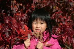 Young Girl Autumn. Young girl enjoying a FALL day Stock Image