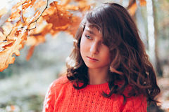 Young girl in the autumn forest Stock Photography