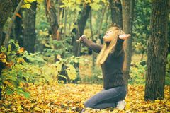 Young girl in autumn forest, throws yellow leaves, toned photo Royalty Free Stock Photos