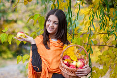 Young girl in autumn park with a basket of apples Royalty Free Stock Photo