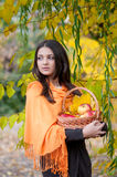 Young girl in autumn park with a basket of apples Stock Photo