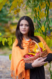 Young girl in autumn park with a basket of apples Stock Images